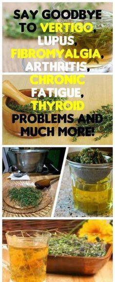 Thyme is a herb with powerful healing properties and is rich in numerous essential vitamins and minerals. The herb is often a part of conventional medications for lupus, multiple sclerosis, rheumatoid arthritis and fibromyalgia. #Lupus #Thyme #Fibromyalgia #thyroid #remedy