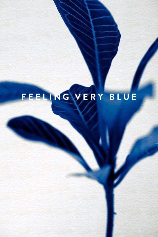 monday blues.