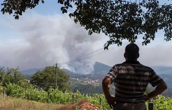 Incêndios - Quatro concelhos de Faro em risco 'máximo'