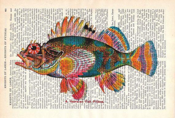 Poisson multicolore sur papier livre                                                                                                                                                                                 Plus