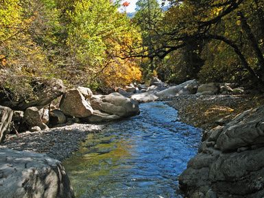 Autumn colors in the Chasse River Valley in Mercantour National Park
