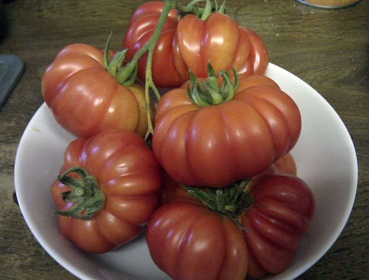 17 best images about tomatoes tomates on pinterest tomato season stuffed tomatoes and. Black Bedroom Furniture Sets. Home Design Ideas