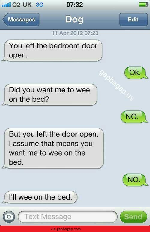 Hilarious Text About Wee vs. Bed ft. Funny Dog