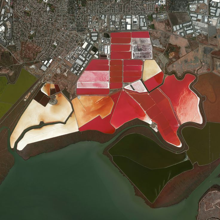 3/15/2016 Salt Evaporation Ponds San Francisco, California, USA 37.504215, -122.036887  This Overview captures salt evaporation ponds in San Francisco, California, USA. Here, water is channeled into these massive basins where it begins a transformation into brines. Over five years, the brines evaporate, concentrate, and travel several miles before they are collected as pure salt crystals. The massive ponds get their vibrant red colors from algae Dunaliella, a particular species of algae…