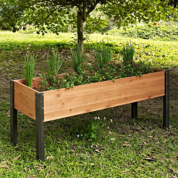 """Coral Coast Bloomfield Wood Raised Garden Bed 70"""" L x 24"""