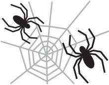 Halloween Pumpkin Carving Template: Spiders Web   eHow.com