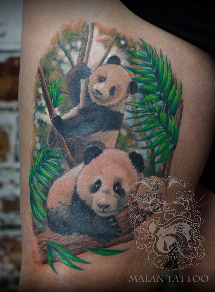 284465a8a panda bears tattoo in full color realism | Malan Tattoo - striving ...