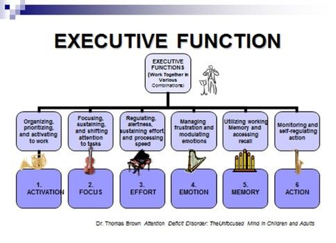 "ADHD and Executive Function - ""The inconsistencies in performance often reported by people with ADHD can be understood and articulated by being aware of what function is involved. This information is invaluable when setting up structure and a system for success."""