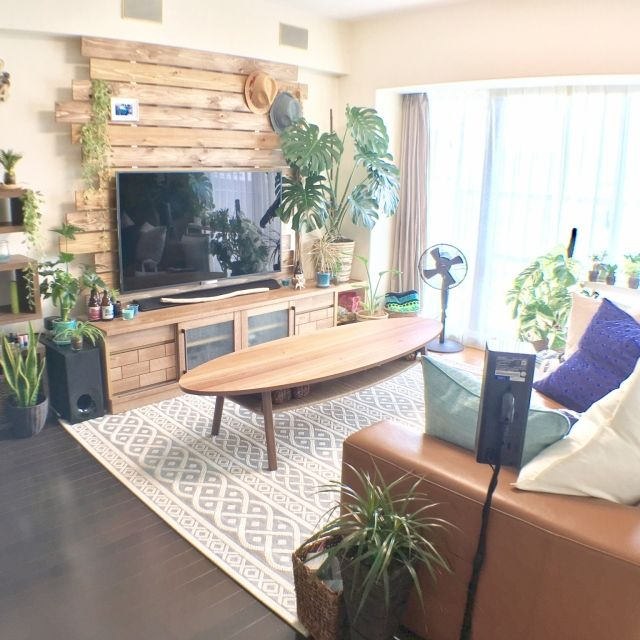ikkaさんの、リビング,観葉植物,IKEA,帽子,ラグ,扇風機,DIY,一人暮らし,ニトリ,コーヒーテーブル,クッションカバー,モンステラ,ディアウォール,中古マンション,NO GREEN NO LIFE,グリーンのある暮らし,観葉植物のある暮らし,モンステラ大好き,のお部屋写真