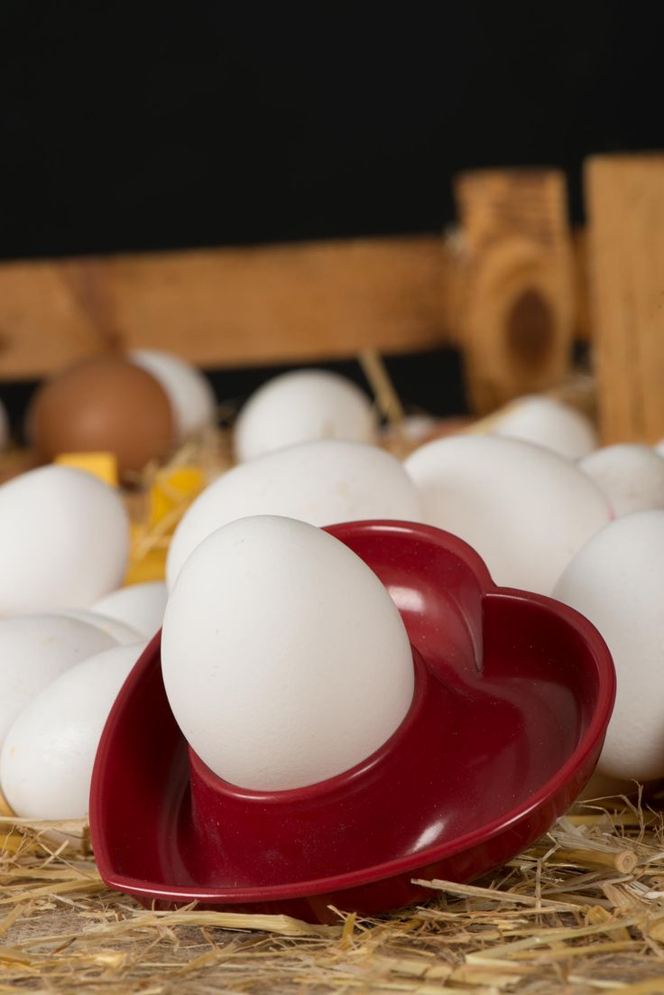 still life ürün yumurta profesyonel fotoğraf çekimi