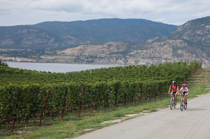 Cycle along part of the 374-mile Kettle Valley Railway (KVR) trail past wineries overlooking the massive Okanagan Lake and bask in one of the 300+ days of yearly sunshine that graces Penticton, BC.