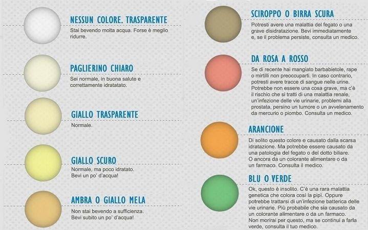 """Il colore della tua """"pipì"""" Dice se sei in Salute. Ecco come capirlo... (Infografica)   ilQUIeORA"""