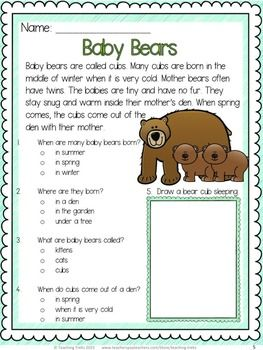 Spring reading comprehension FREEBIE! Baby bears!