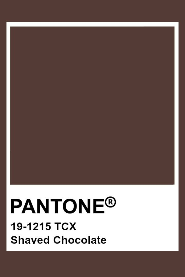 Pantone Shaved Chocolate Chocolate In 2019 Chocolate Brown Paint