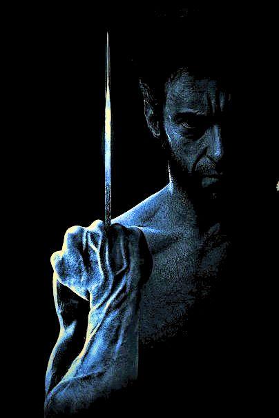 Wolverine animal wolverine is my favorite animal wolverines - Best 25 Wolverines Ideas On Pinterest Logan Xmen X 23