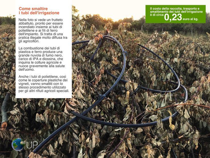 Come smaltire i tubi dell'irrigazione