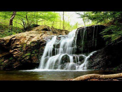 EAU QUI RUISSSELLE & Douce Musique Zen ─ Sommeil Profond, Etude, Méditation, Spa ☯ 100% Relax - YouTube