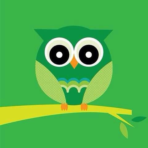 Pin By Vicki Brogan On Cool Stuff Ideas Pinterest Owl