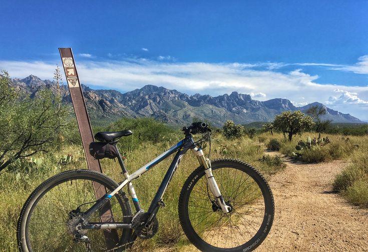Mountain biking 50 Year Trail Catalina State Park | State ...
