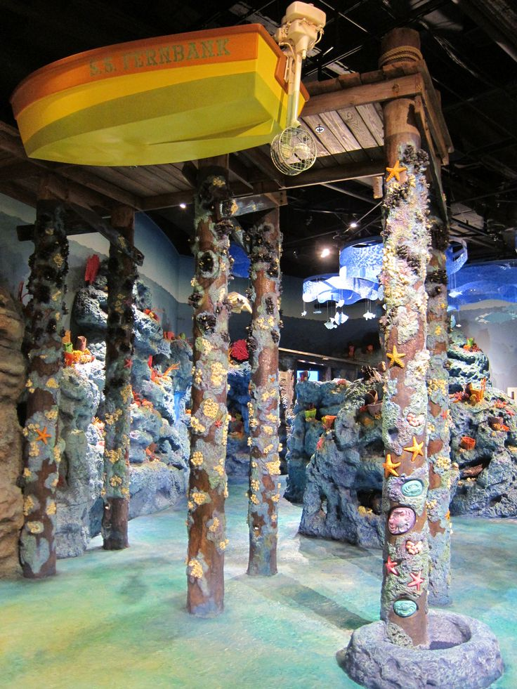 Fernbank Museum of Natural History's NatureQuest Indoor Playground for Kids