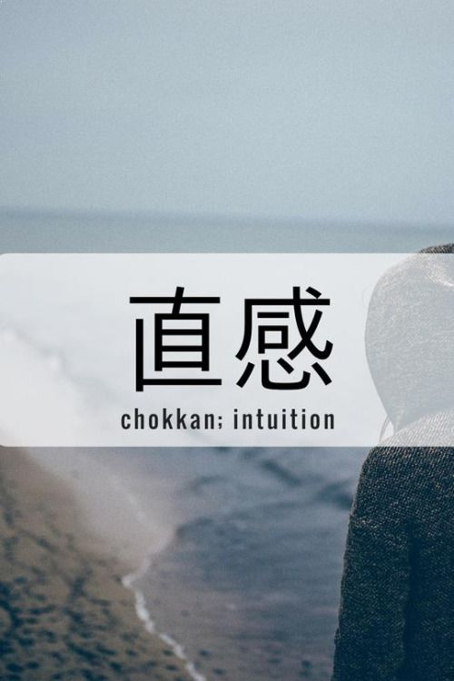 One Kanji a Day直感、chokkan; intuition