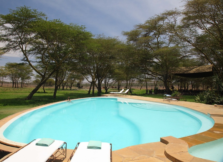 The swimming pool at sirikoi just near the deck and overlooking the watering hole for Public swimming pools around me