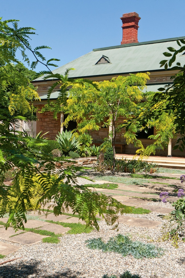 84 best australian native garden designs images on Pinterest