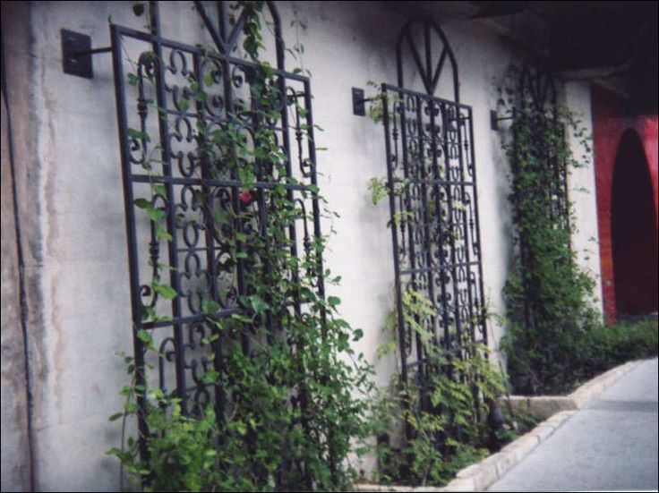 Best 25 Wrought iron trellis ideas on Pinterest Iron trellis