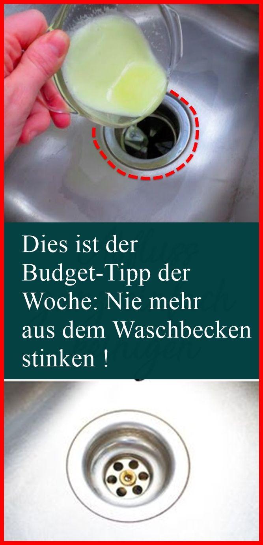 Dies Ist Der Budget Tipp Der Woche Nie Mehr Aus Dem Waschbecken Stinken Mit Bildern Waschbecken Tipps Budget