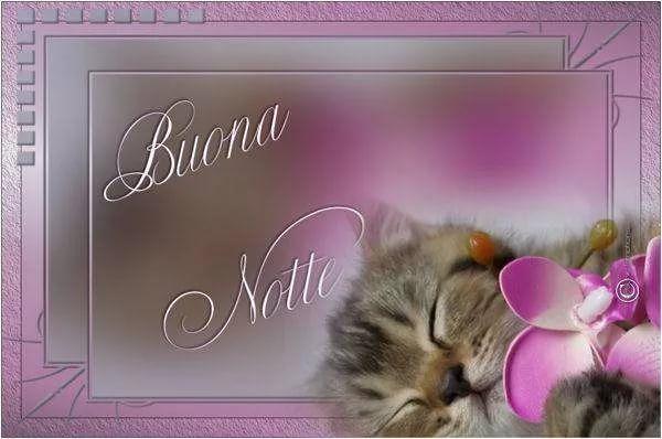 Спокойной ночи открытки на итальянском