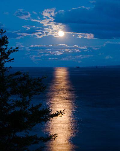 Amazing Moonrise. Quadra Island, BC