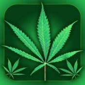 Weed Yo Screen  By AppCore