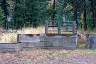 Photo of a mounting ramp where the horse stands in a chute next to the ramp.