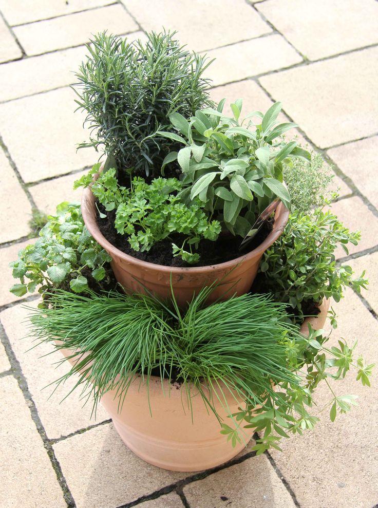 Krauterturm 6136 Garten Garden Plants Und Garden Crafts