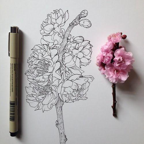 Hand Drawn Flower: