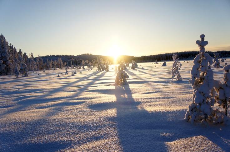 Ski trip in Varpaisjärvi, Eastern Finland 23.1.2013