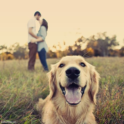 looks like Luke and I and our future golden retriever :) I think I would want to be more in focus with the Camera! Would also be cute as a family photo with the kids (and dog) up close!