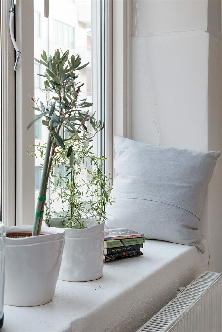 Plants for a reading nook