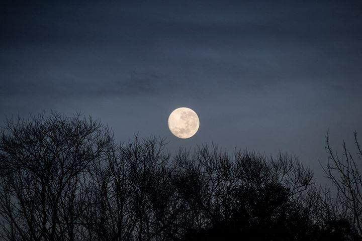 Ricardo de Virreyes: El problema de sacar demasiadas fotos: esta no la publiqué nunca, es del 24/06/2013, mientras amanecía. Una bella luna llena.
