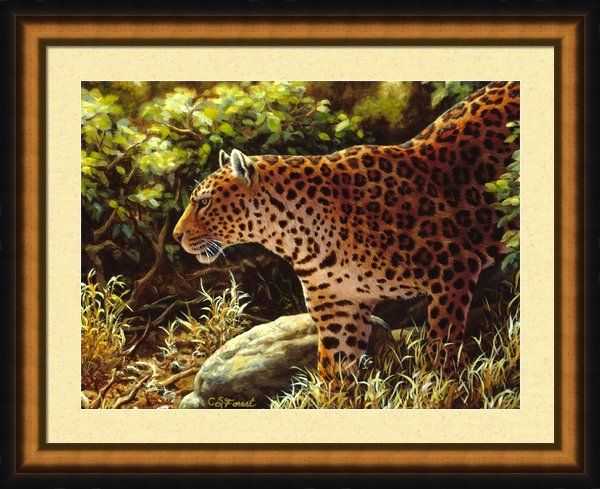 Leopard Painting On The Prowl Framed Print By Crista