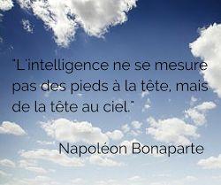 """Blog Optim Office - citation du jour : """"L'intelligence ne se mesure pas des pieds à la tête, mais de la tête au ciel"""". Napoléon Bonaparte"""