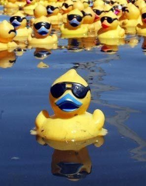 National Rubber Ducky Day Seattle, WA #Kids #Events