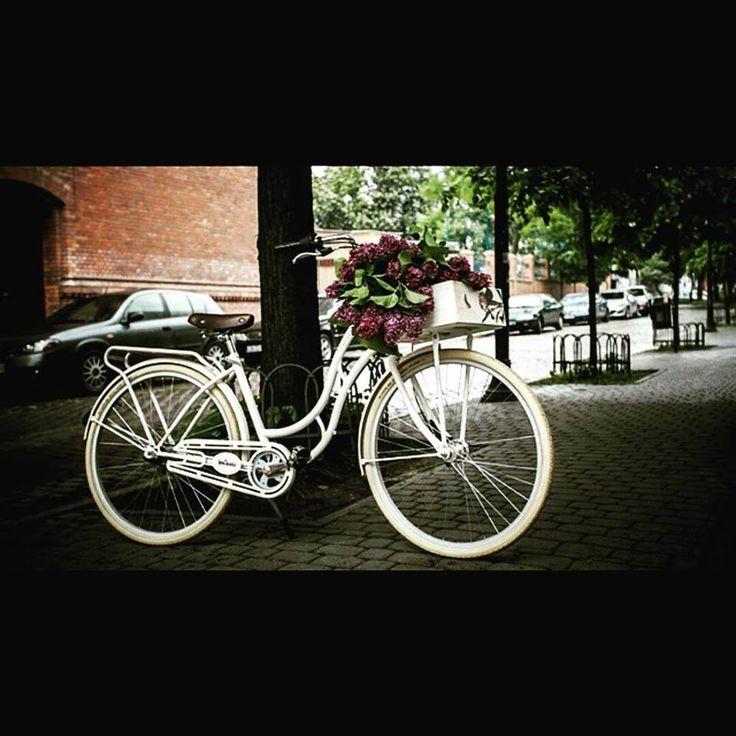 Bicicletas urbanas en nuestra tienda FavoriteBike  En foto bici ENVY CREMA disponible también en color turquesa, rosa y negra en buen precio 499€ BICICLETA DE PASEO ENVY CREMA http://favoritebike.com/…/bi…/bicicleta-de-paseo-envy-crema/ www.favoritebike.com #bicidepaseo #urbana #citybikes #city #bike #cycling #citystyle #cream #bycicle #vintage #fashion #eco #ecofrendly #healthychoices #healthy #sport #calorias #dieta #sportbike