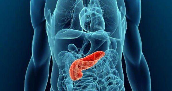 Любое нарушение работы внутренних органов негативно отражаетсяна состоянии нашегоздоровья.Если проявляются проблемыс пищеварением, повышается уровень сахара в крови, то такие симптомы указываютна сбои в работе поджелудочной железы. Проявляйте заботу о себе, правильно питайтесь и БУДЕТЕ ЗДОРОВЫ! Этот небольшого размера орган, расположенный слева под желудком, выполняет сразу две жизненно важные функции – пищеварительную и эндокринную. Во-первых, поджелудочная …