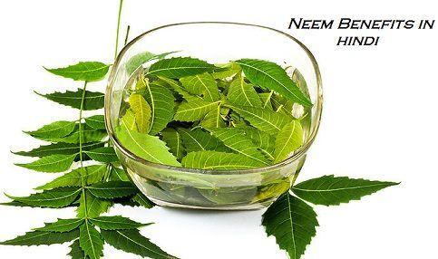 http://www.hindiayurveda.com/neem-benefits-in-hindi-neem-tree-ke-fayde/