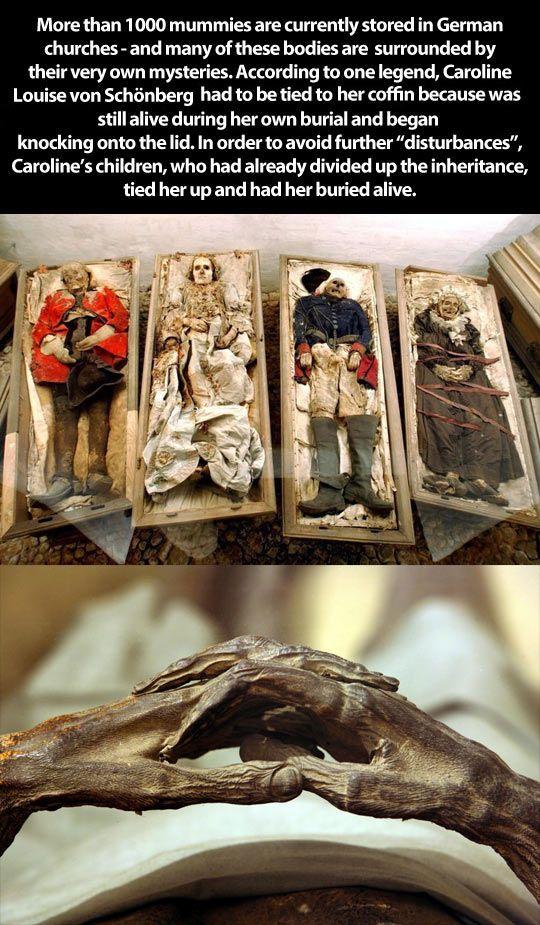 Mummies in Germany - Shocking