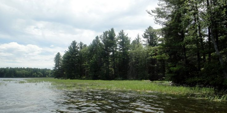 Want lots of space for #SUP? Try White Lake near Arnprior west of Ottawa