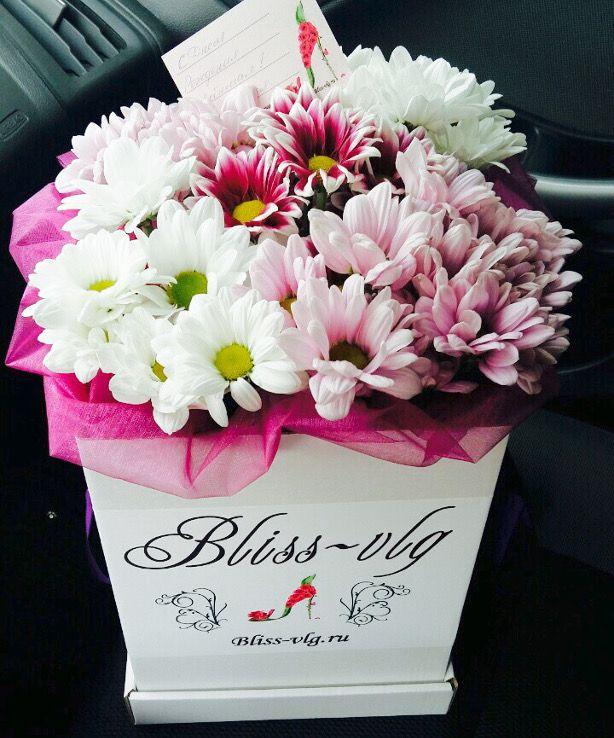 Букет хризантемы трех цветов #flowers #bouquets #roses #Volgograd