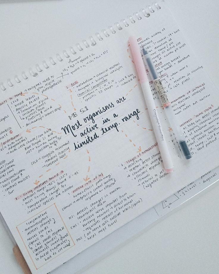 passionately smashing every expectation — studyparadise:  while ago but i forgot to upload...