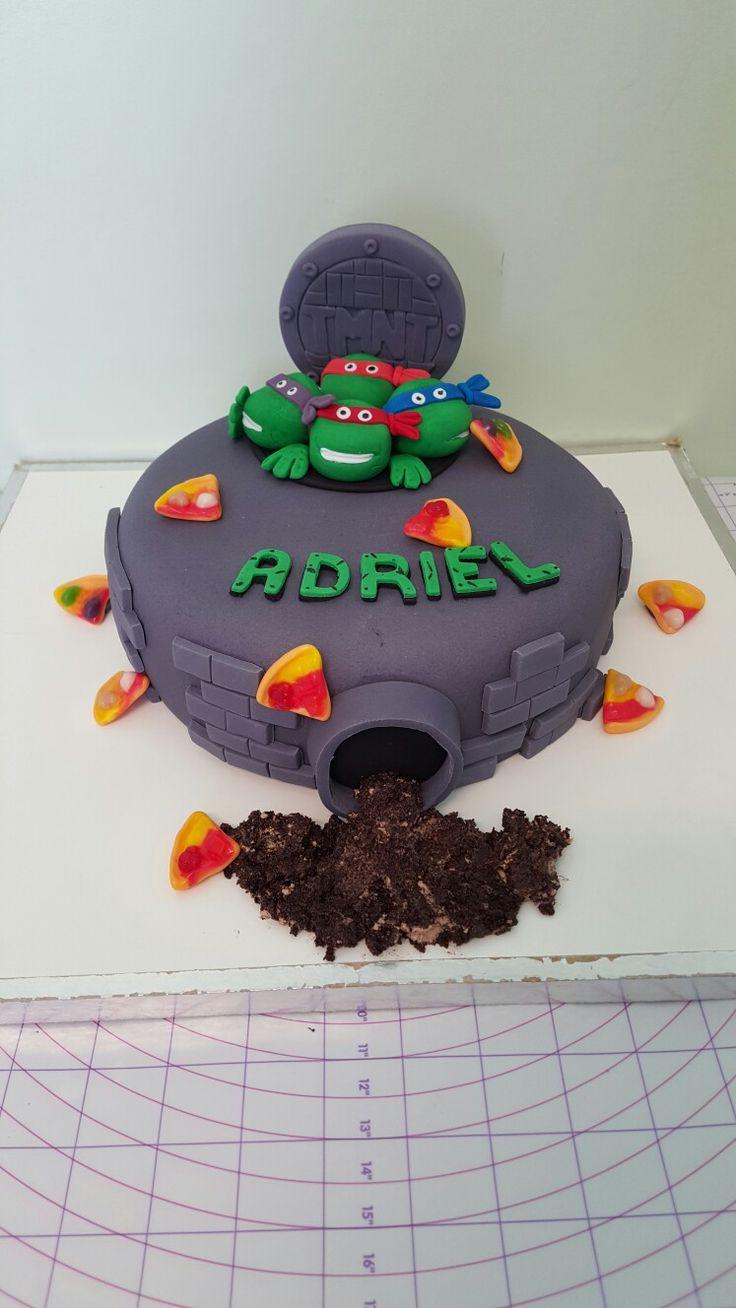 Sons ninja turtle cake